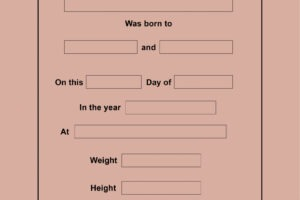 editable birth certificate template printable excel