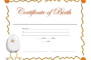 free birth certificate template printable word