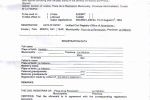printable translation of birth certificate template ppt