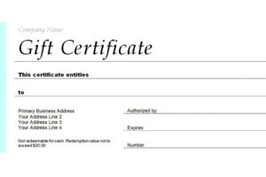 what is a voucher certificate template doc