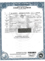 what is a california birth certificate template excel
