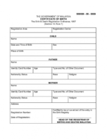 sample english translation of birth certificate template sample