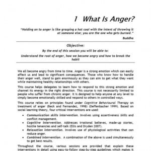 how to make a anger management certificate template word