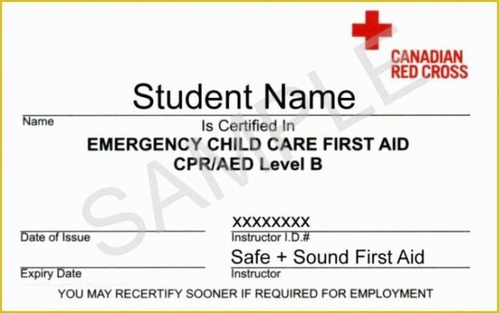 how to make a cpr first aid certificate template sample